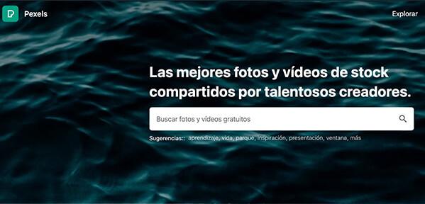 pexels fotos videos stock
